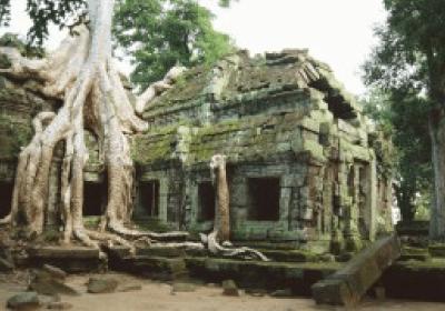 カンボジアのビジネス環境
