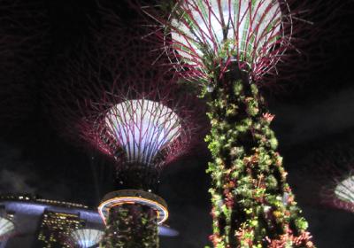 シンガポールのビジネス環境